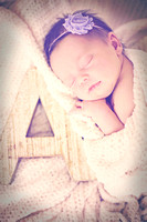 Adalyn Newborn